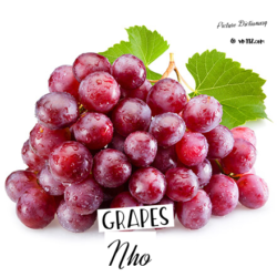 Grape – Nho
