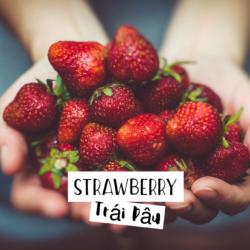 Strawberry – Trái Dâu