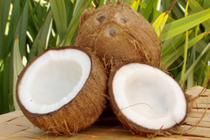 Coconut – Quả Dừa