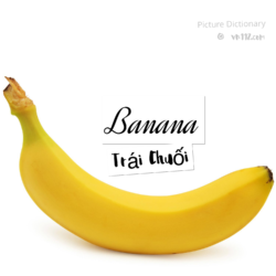 Banana – Trái Chuối