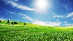 Sunny – Nắng