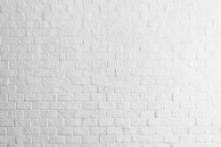 Wall – Tường