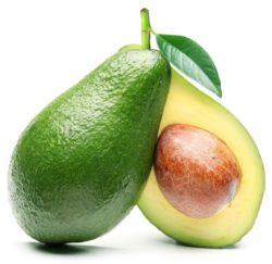 Avocado – Trái Bơ